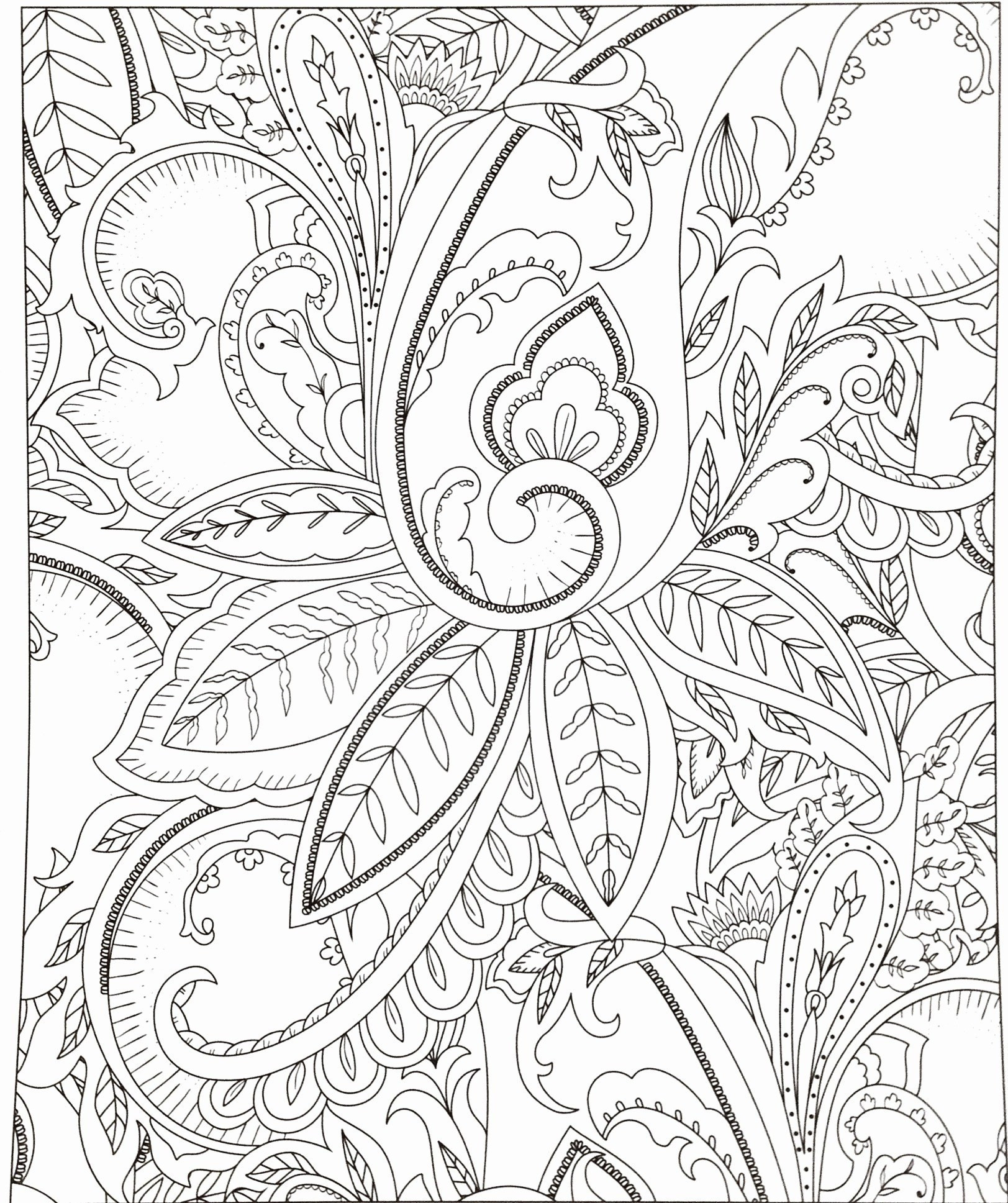 Rosen Zum Ausmalen Neu Blumenbilder Zum Zeichnen Wunderschöne 35 Blumen Ausmalbilder Sammlung
