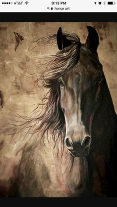 Schöne Und Das Biest Ausmalbilder Einzigartig 751 Besten Pferde Zeichnen Bilder Auf Pinterest In 2018 Bild