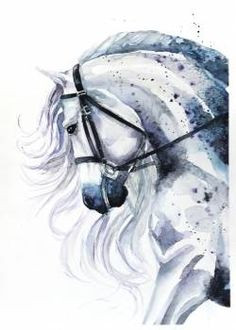 Schöne Und Das Biest Ausmalbilder Inspirierend 751 Besten Pferde Zeichnen Bilder Auf Pinterest In 2018 Bild