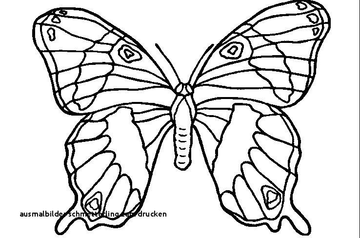 Schmetterling Bilder Zum Ausmalen Einzigartig Ausmalbilder Schmetterling Zum Drucken Ausmalbilder Ritter Burg Fotos
