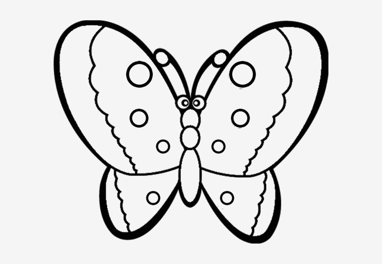 Schmetterling Bilder Zum Ausmalen Einzigartig Verschiedene Bilder Färben Schmetterlingsbilder Zum Ausmalen Fotos