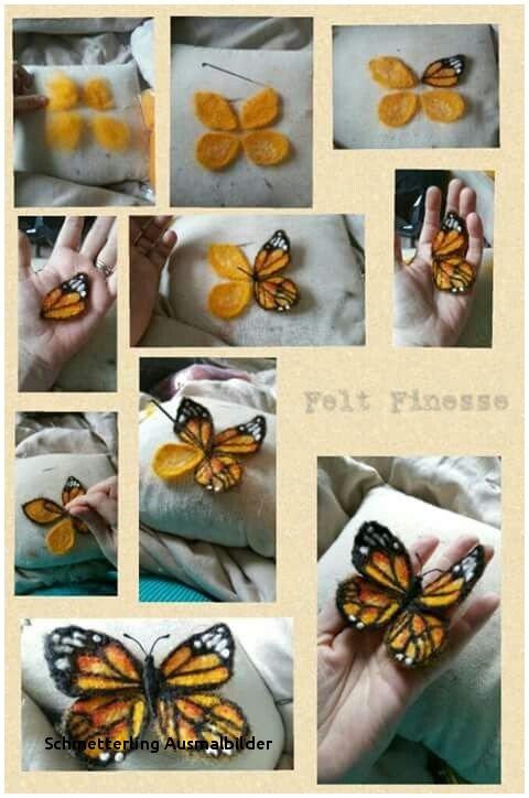 Schmetterling Bilder Zum Ausmalen Frisch Schmetterling Ausmalbilder Malvorlage A Book Coloring Pages Best sol Bilder