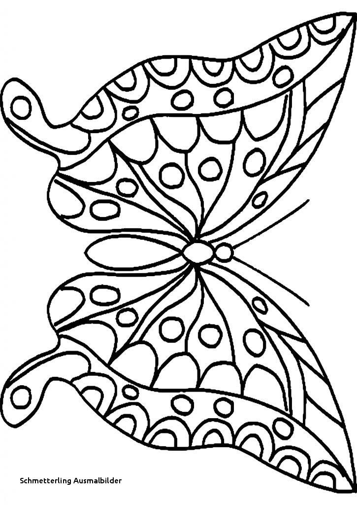 Schmetterling Bilder Zum Ausmalen Genial Schmetterling Ausmalbilder Malvorlage A Book Coloring Pages Best sol Das Bild