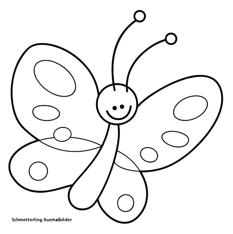 Schmetterling Bilder Zum Ausmalen Inspirierend Schmetterling Ausmalbilder Malvorlage A Book Coloring Pages Best sol Galerie