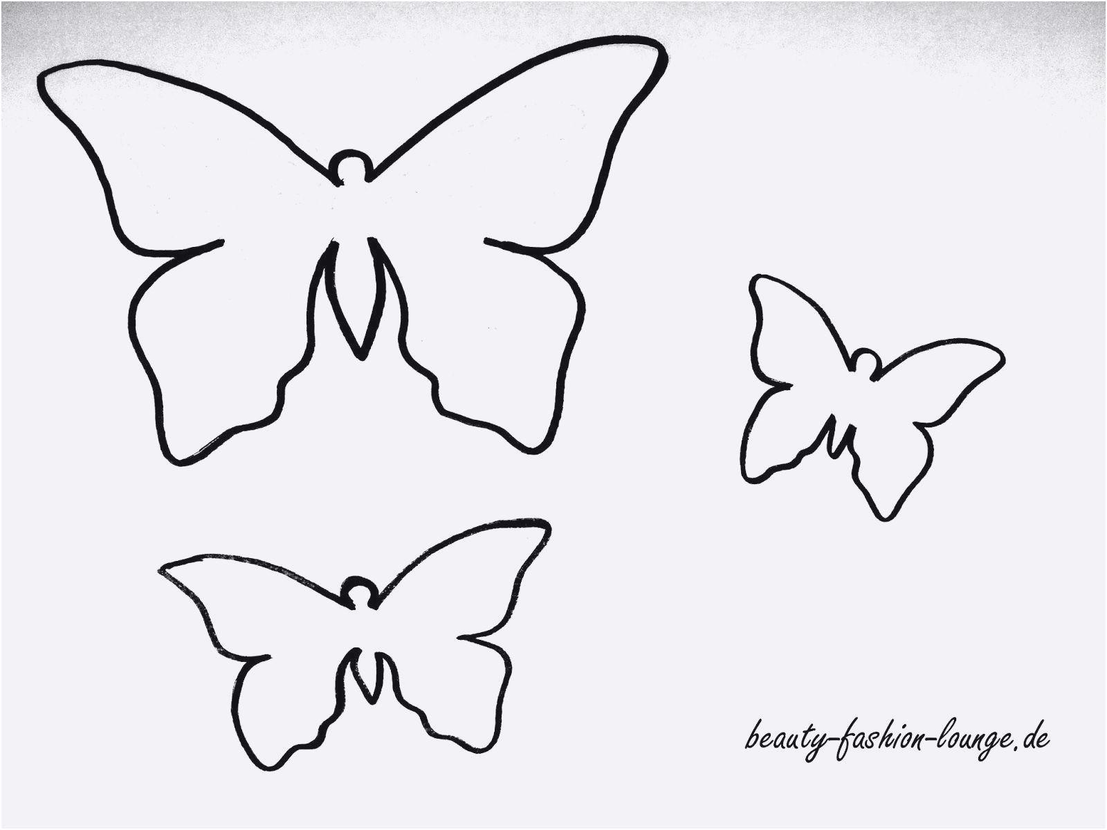 Schmetterling Bilder Zum Ausmalen Inspirierend Schmetterling Vorlage Neu Schmetterlinge Ausmalbilder Das Bild