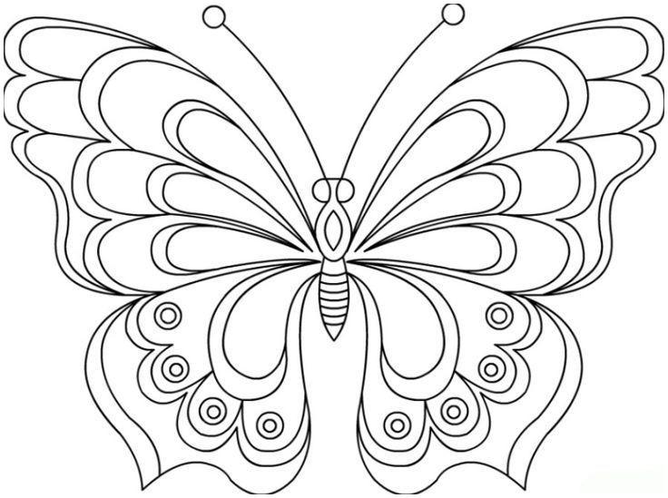Schmetterling Bilder Zum Ausmalen Neu Schmetterling Vorlage Malen 596 Malvorlage Vorlage Ausmalbilder Das Bild