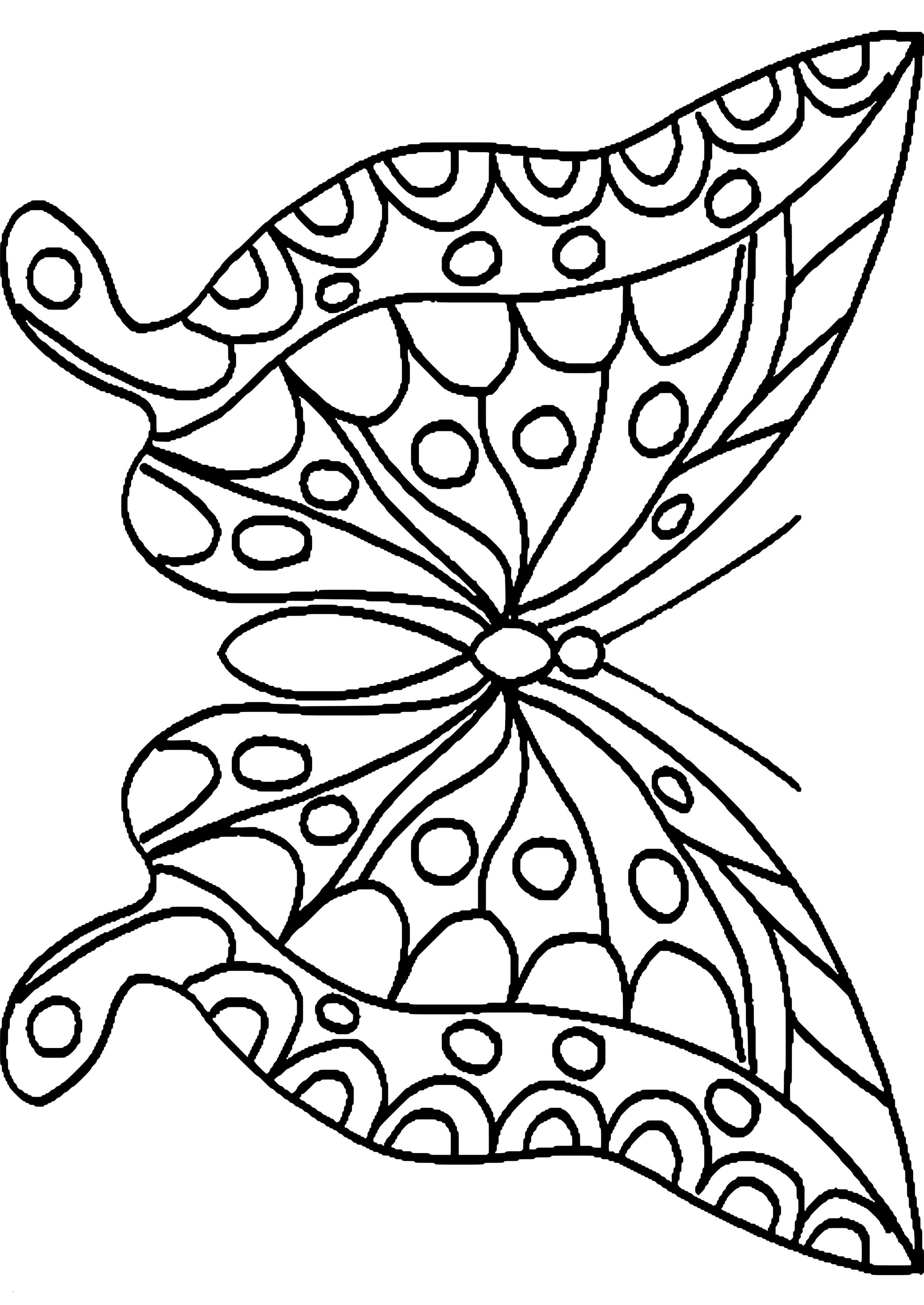 Schmetterling Mit Blume Zum Ausmalen Einzigartig Malvorlagen Blumen Und Schmetterlinge Fesselnd 35 Ausmalbilder Stock