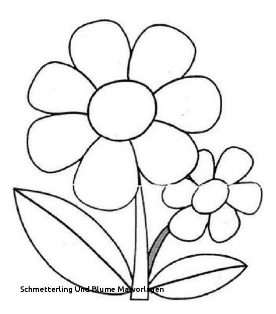 Schmetterling Mit Blume Zum Ausmalen Einzigartig Schmetterling Und Blume Malvorlagen Ausmalbilder Blumen Ranken 01 Bild