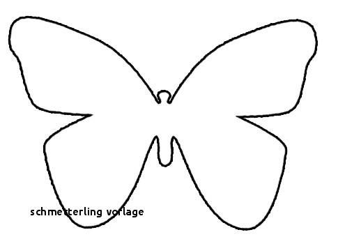 Schmetterling Mit Blume Zum Ausmalen Frisch 30 Schmetterling Vorlage Das Bild