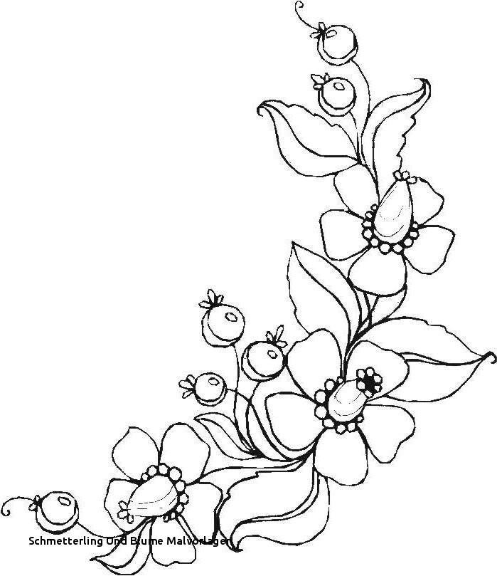 Schmetterling Mit Blume Zum Ausmalen Frisch Schmetterling Und Blume Malvorlagen Ausmalbilder Blumen Ranken 01 Bilder