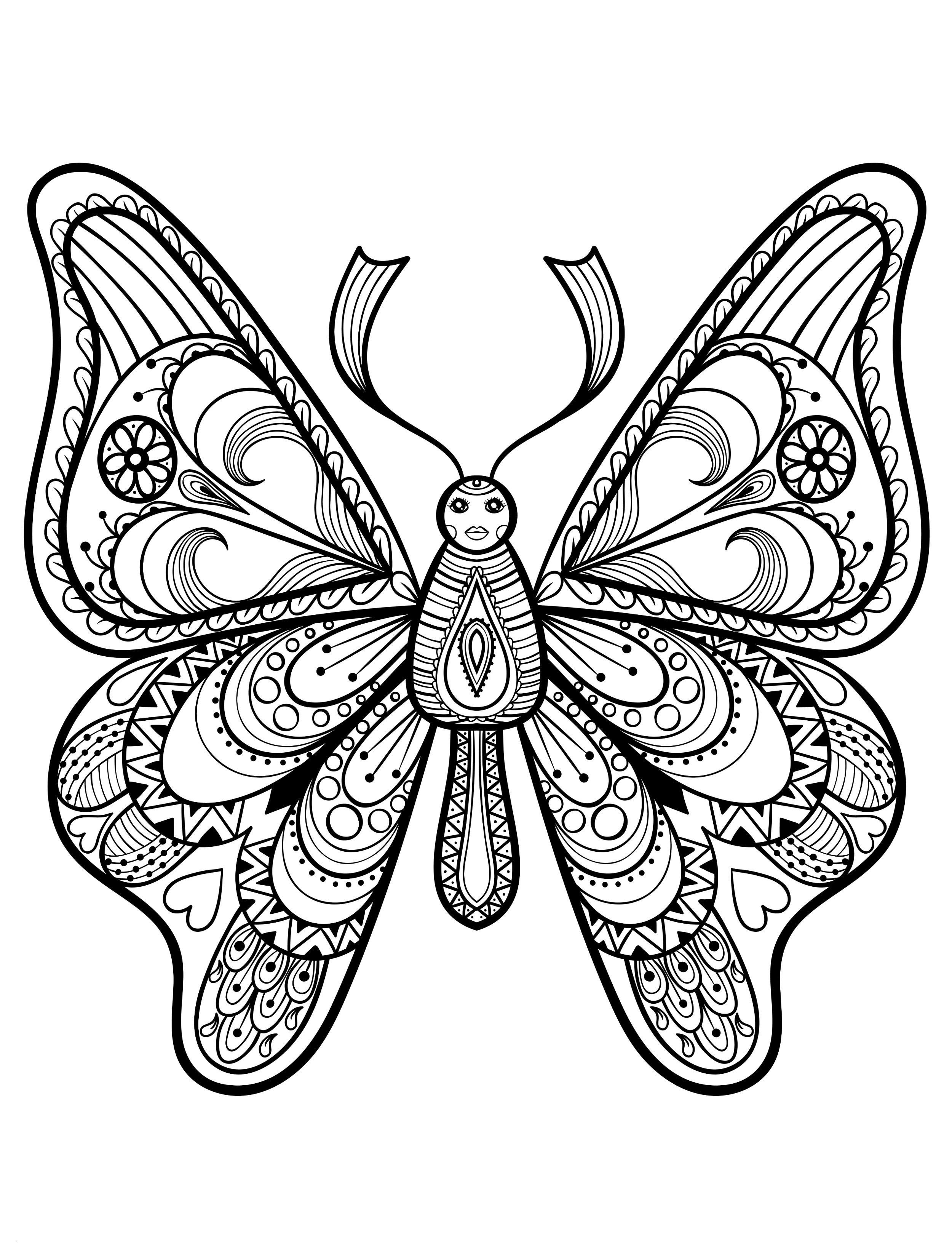 Schmetterling Mit Blume Zum Ausmalen Genial 30 Ausmalbilder Schmetterling Mandala forstergallery Das Bild