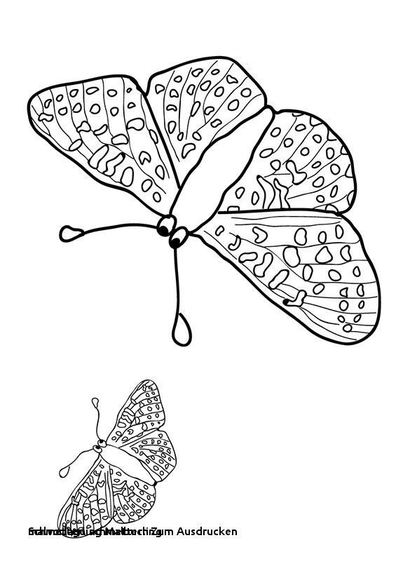Schmetterling Mit Blume Zum Ausmalen Genial Malvorlage Schmetterling Kostenlose Malvorlage Natur Vier Kleine Sammlung