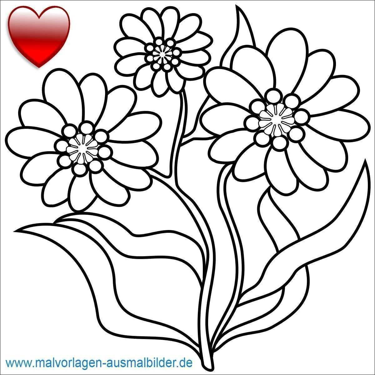 Schmetterling Mit Blume Zum Ausmalen Inspirierend Malvorlagen Schmetterlinge Blumen Bild – Ausmalbilder Ideen Bild