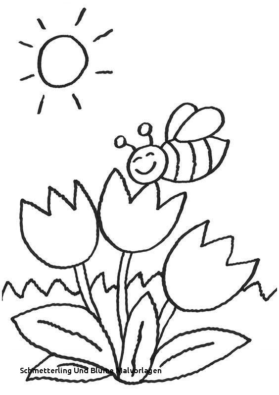 Schmetterling Mit Blume Zum Ausmalen Neu Schmetterling Und Blume Malvorlagen Ausmalbilder Blumen Ranken 01 Bild