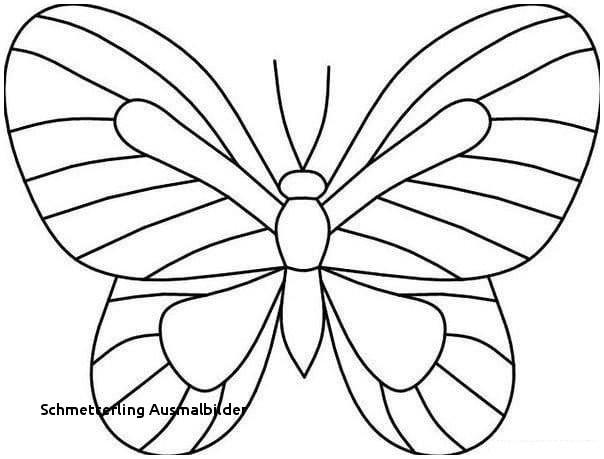 Schmetterlinge Bilder Zum Ausmalen Das Beste Von Schmetterling Ausmalbilder Malvorlage A Book Coloring Pages Best sol Sammlung