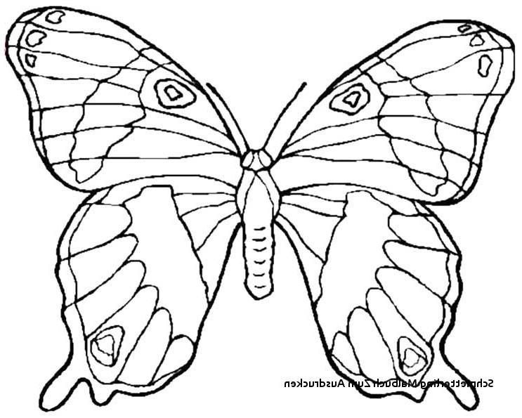 Schmetterlinge Bilder Zum Ausmalen Frisch 22 Einzigartig Schmetterling Zum Ausmalen – Malvorlagen Ideen Bilder