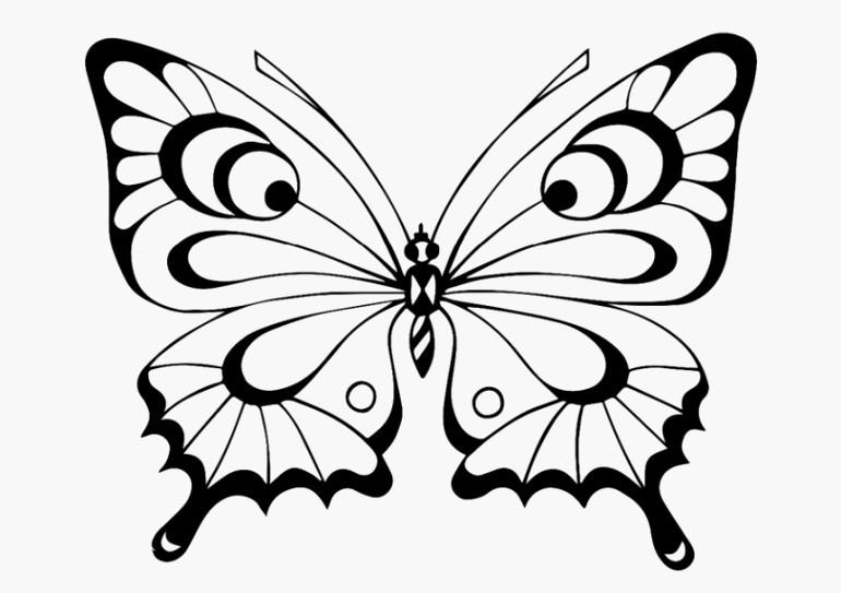 Schmetterlinge Bilder Zum Ausmalen Frisch Schmetterling Schablone Zum Ausschneiden Lecks Schmetterlings Fotos