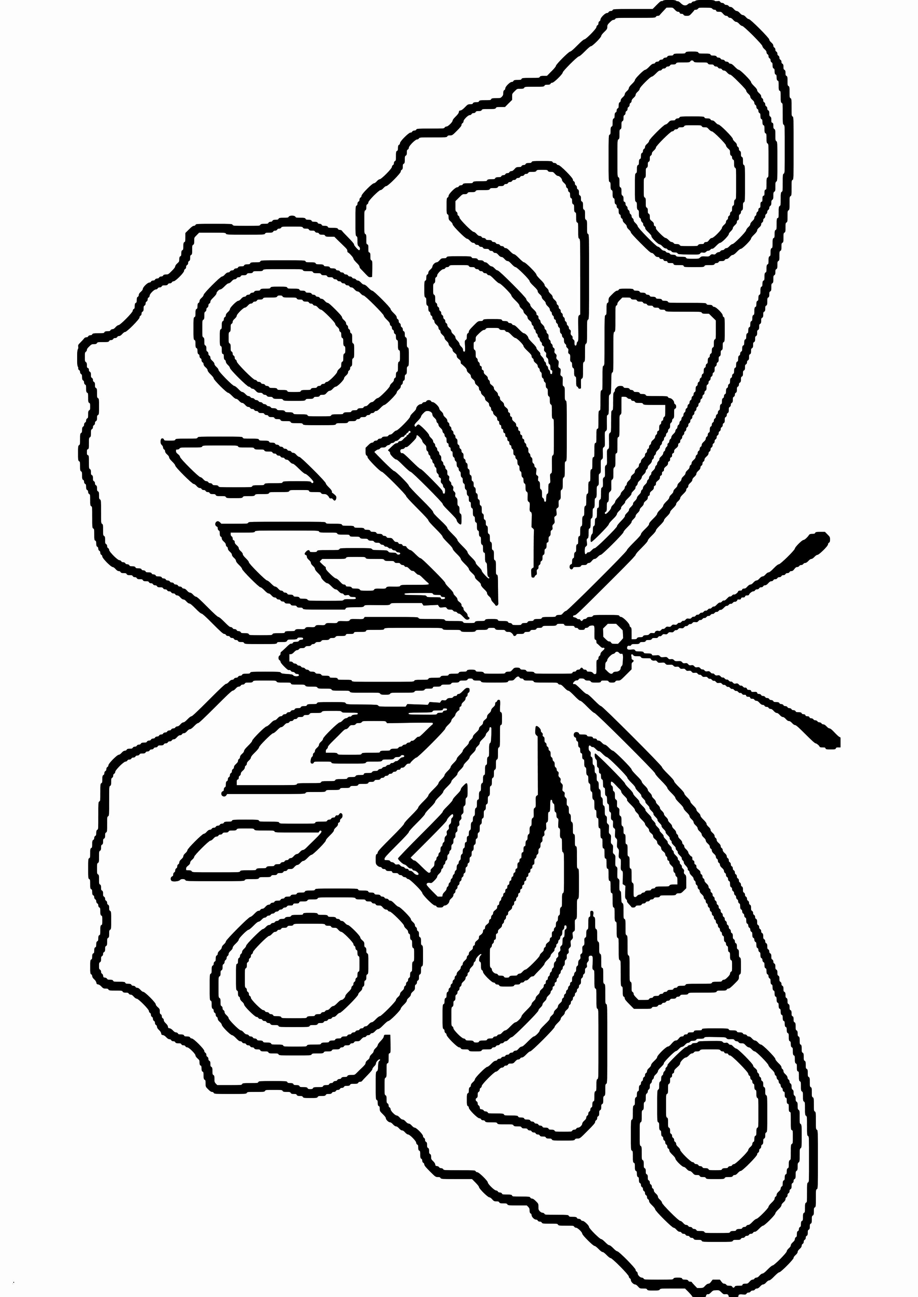 Schmetterlinge Bilder Zum Ausmalen Genial 40 Das Konzept Von Ausmalbilder Schmetterling Zum Ausdrucken Stock