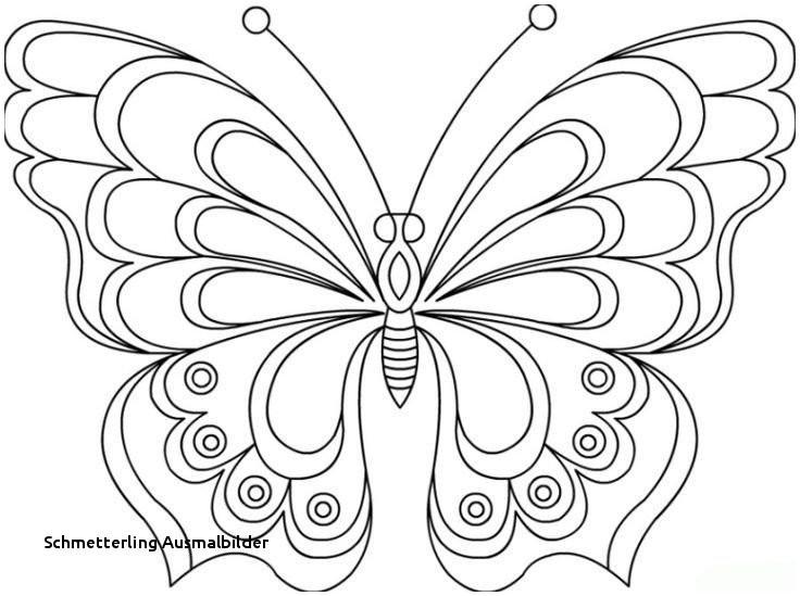 Schmetterlinge Bilder Zum Ausmalen Inspirierend Schmetterling Ausmalbilder Malvorlage A Book Coloring Pages Best sol Bilder