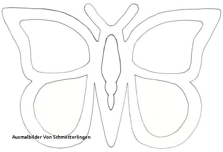 Schmetterlinge Bilder Zum Ausmalen Neu Ausmalbilder Von Schmetterlingen 40 Kostenlose Ausmalbilder Galerie
