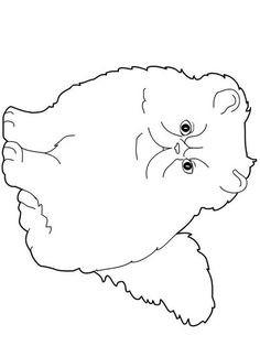 Seepferdchen Zum Ausmalen Das Beste Von Ocean Animal Coloring Pages Doodle Art Alley Coloring Das Bild