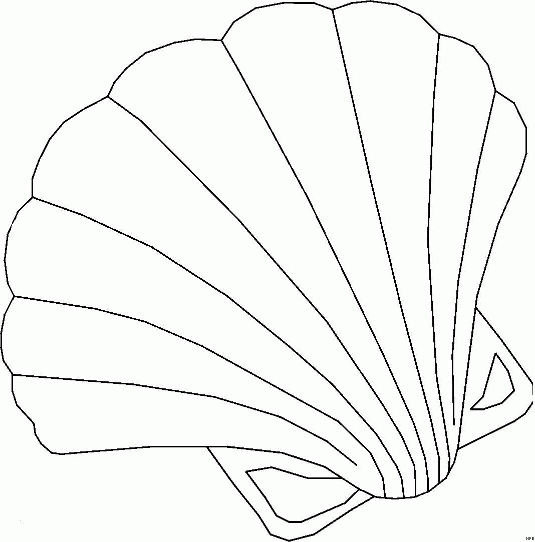 Seestern Zum Ausmalen Einzigartig 35 Ausmalbilder Muschel Scoredatscore In Muschel Ausmalbild Das Bild