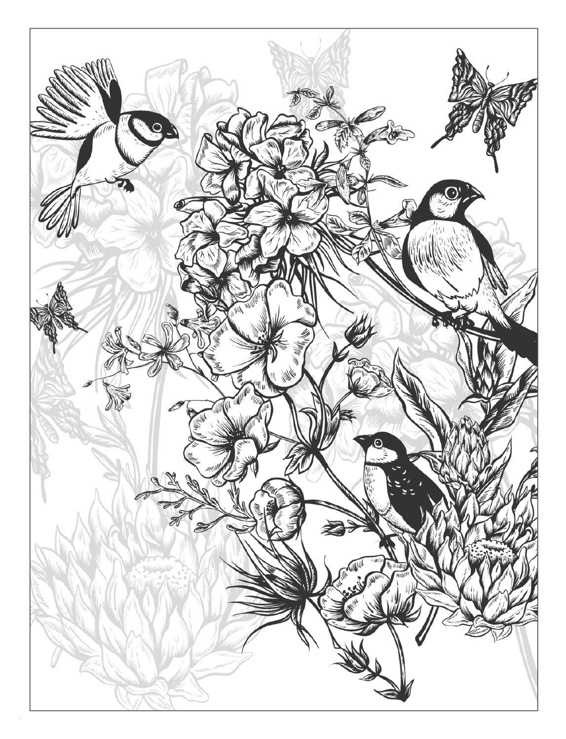 Sendung Mit Der Maus Ausmalbilder Frisch Beautiful Flowers Detailed Floral Designs Coloring Book Preview Galerie