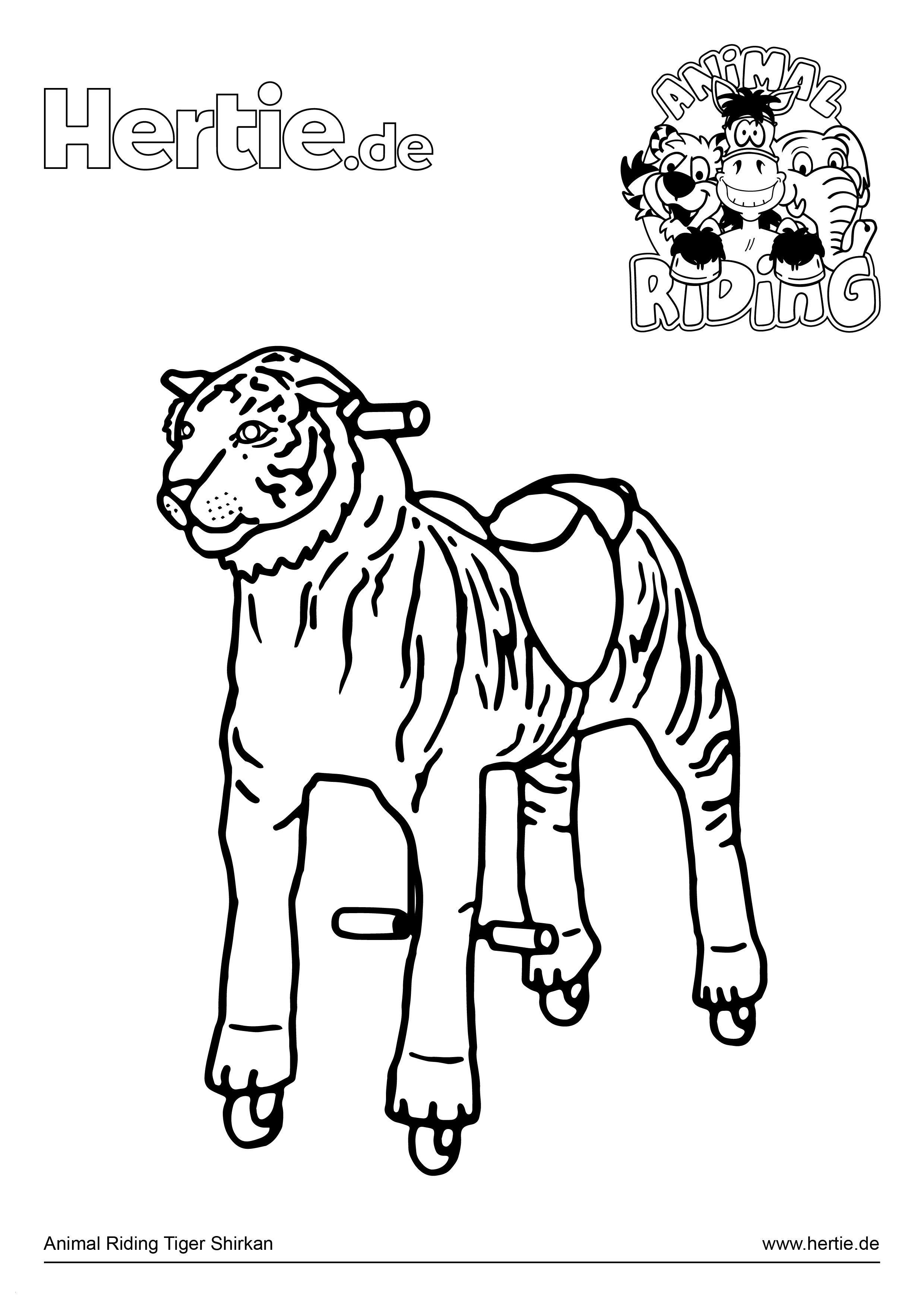 Shaun Das Schaf Ausmalbild Das Beste Von Animal Riding Ausmalbild Tiger Shirkan Best Einhorn Ausmalbilder Bilder