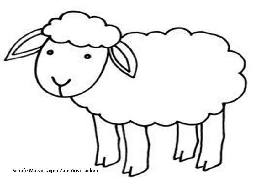 Shaun Das Schaf Ausmalbild Genial Schafe Malvorlagen Zum Ausdrucken Bayern Ausmalbilder Frisch Igel Das Bild
