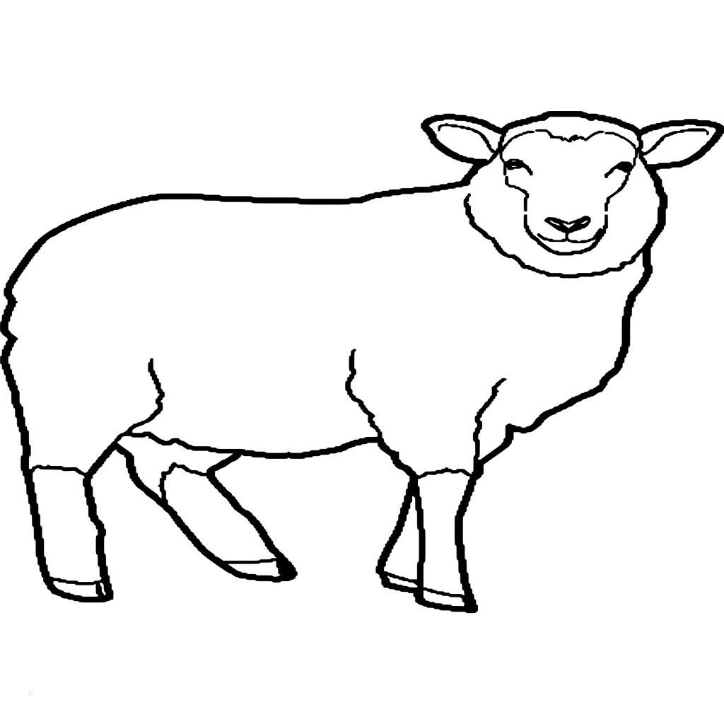Shaun Das Schaf Ausmalbild Neu Malvorlagen Schaf Das Beste ...