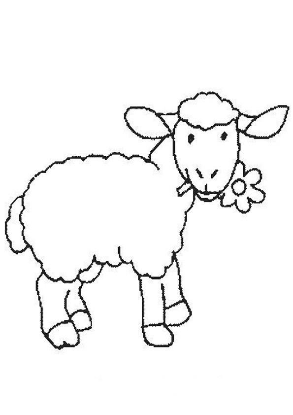Shaun Das Schaf Ausmalbild Neu Schaf Malvorlagen Kostenlos Zum Ausdrucken Ausmalbilder Schaf Sammlung