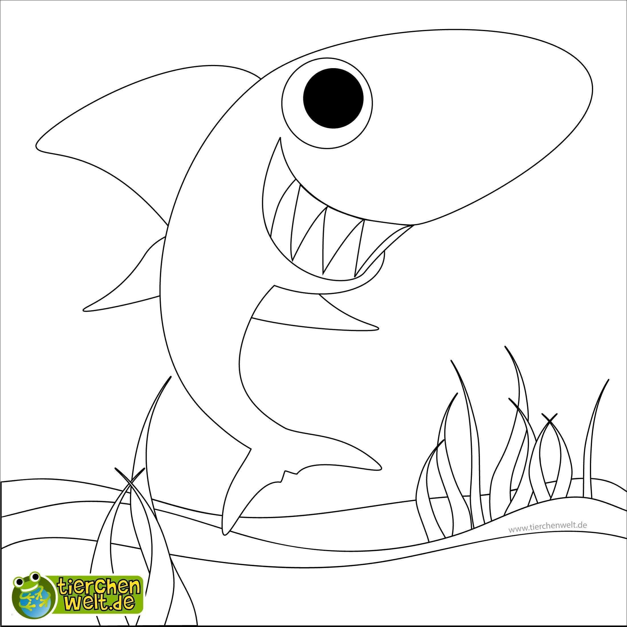 Sonic Zum Ausmalen Genial Hai Bilder Zum Ausmalen Ausmalbilder sonic Lernspiele Färbung Fotografieren
