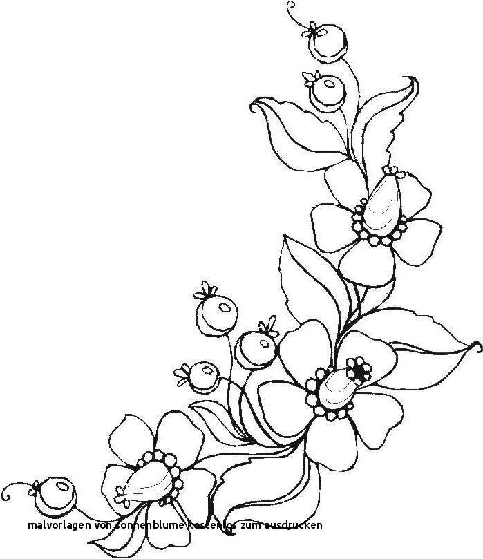 99 frisch sonnenblume malvorlagen kostenlos bild  kinder