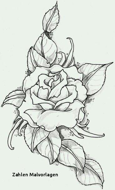 sonnenblume malvorlagen kostenlos inspirierend kostenlos