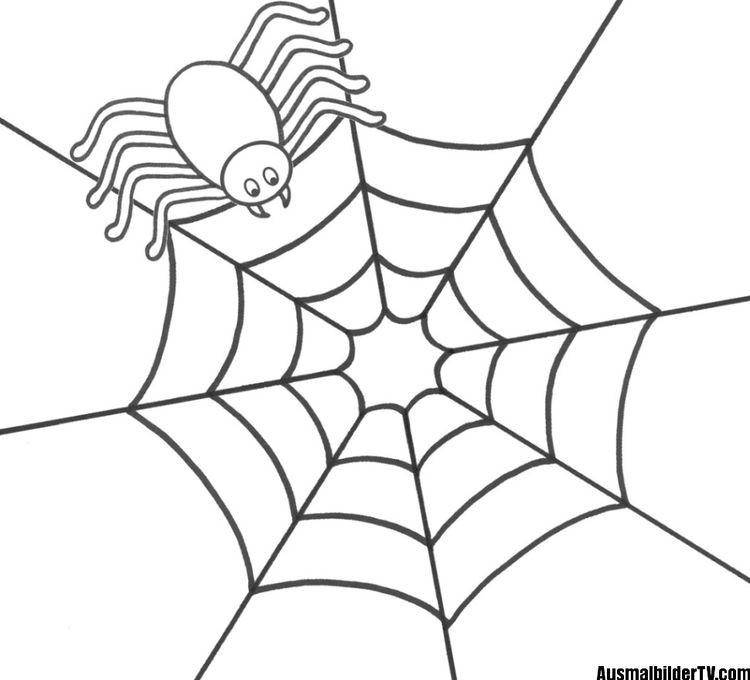 Spinnennetz Mit Spinne Malvorlage Das Beste Von Spinne Ausmalbild Fotografieren