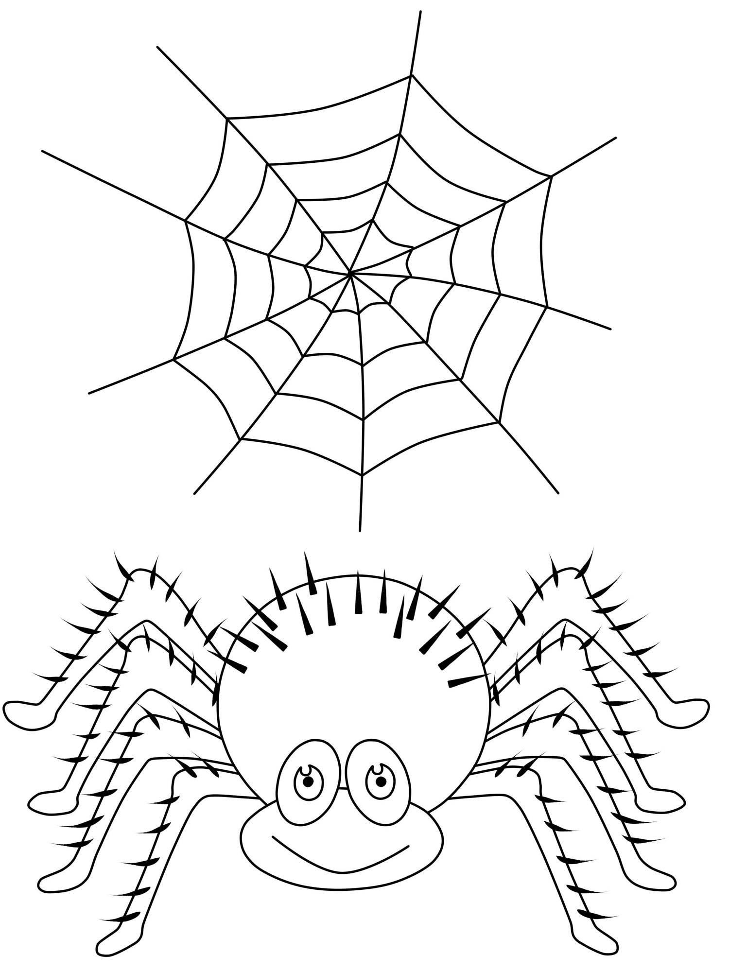 Spinnennetz Mit Spinne Malvorlage Genial Halloween Malvorlagen Katze In Einem Hut Halloween Kürbis Bild