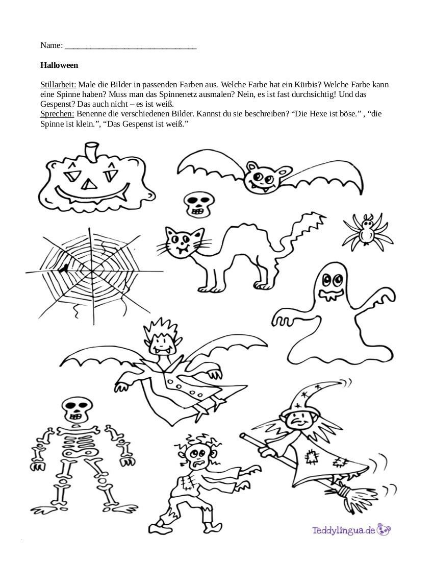 Spinnennetz Mit Spinne Malvorlage Inspirierend Halloween Malvorlagen Katze In Einem Hut Halloween Kürbis Bilder