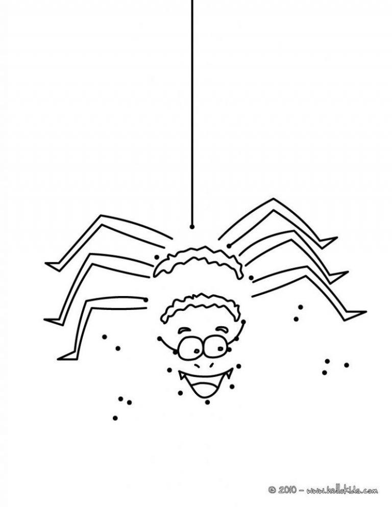 spinnennetz mit spinne malvorlage einzigartig spinne