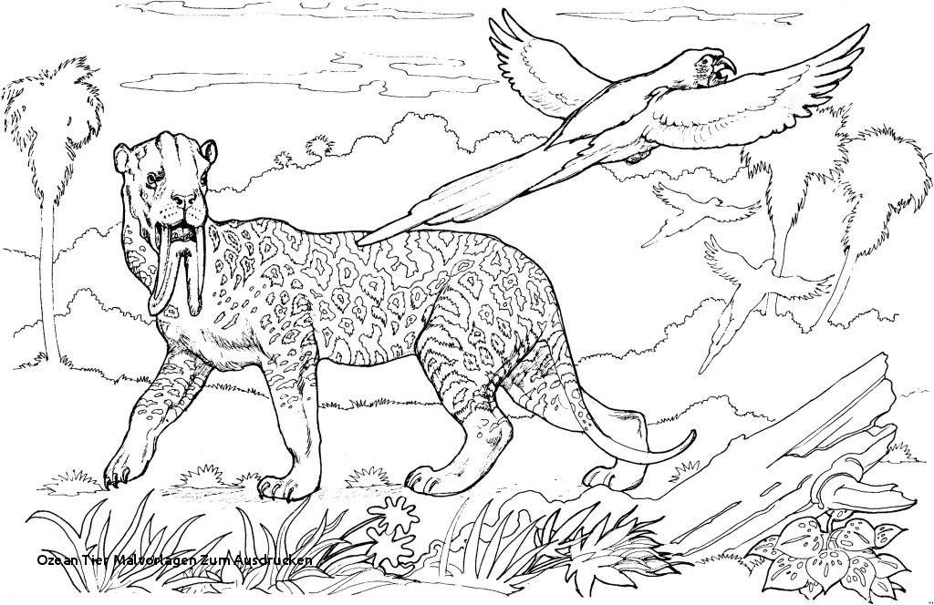 Steinzeit Bilder Zum Ausdrucken Genial Ozean Tier Malvorlagen Zum Ausdrucken Malvorlagen Steinzeit Tiere Galerie