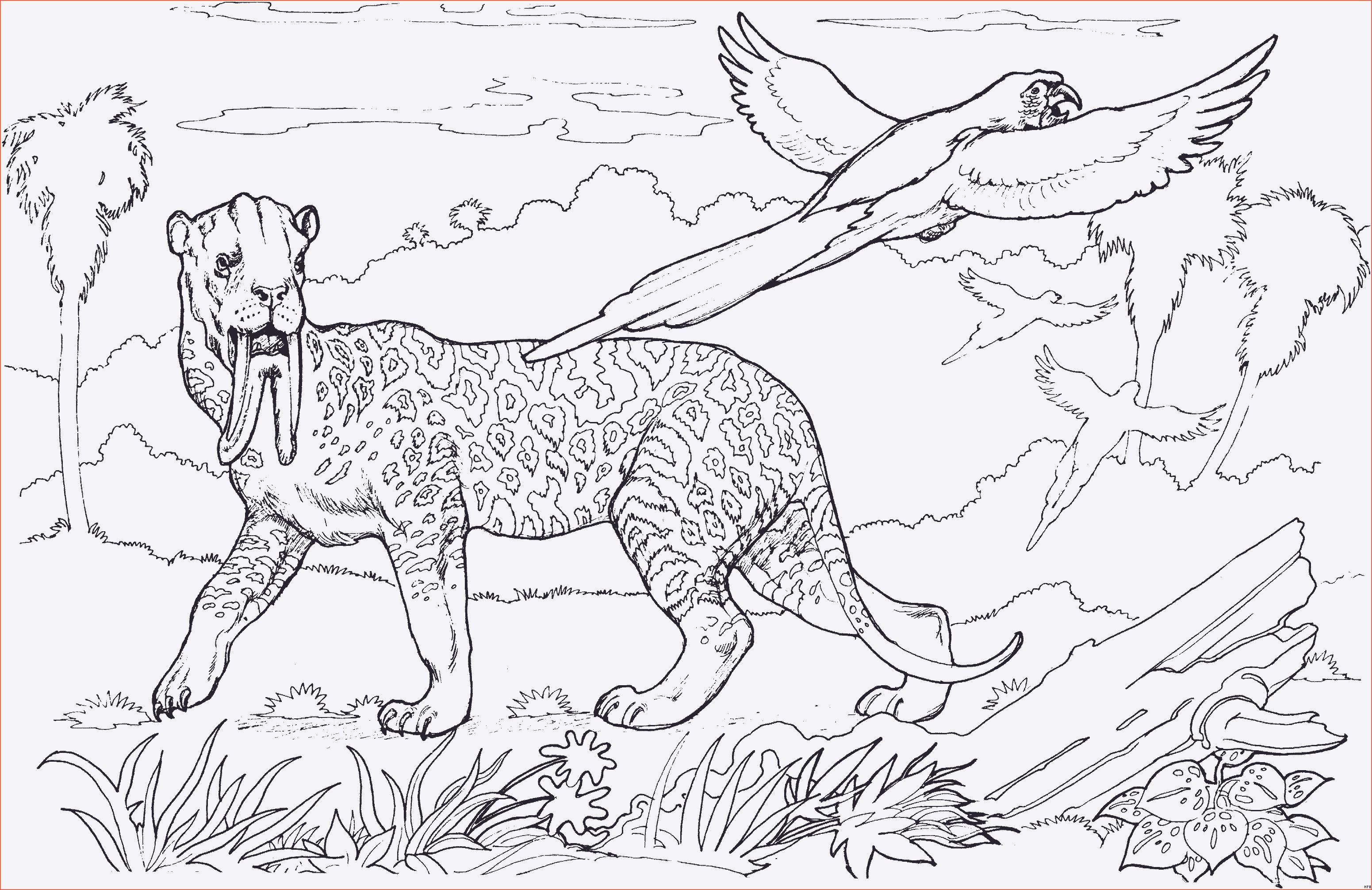 Steinzeit Bilder Zum Ausmalen Das Beste Von Ausmalbilder Steinzeit Tiere Galerie