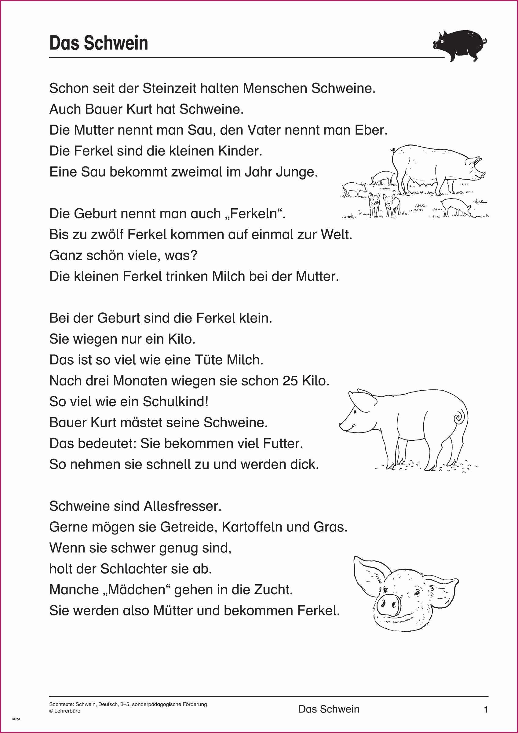 Steinzeit Bilder Zum Ausmalen Genial 46 Einzigartig Bilder Biologie 5 Klasse Gymnasium Hund Elegant Galerie