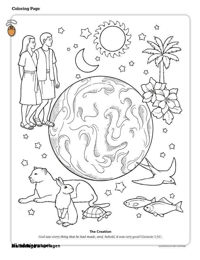 Steinzeit Bilder Zum Ausmalen Genial Tierbilder Malvorlagen Malvorlagen Steinzeit Tiere Zum Drucken Bilder