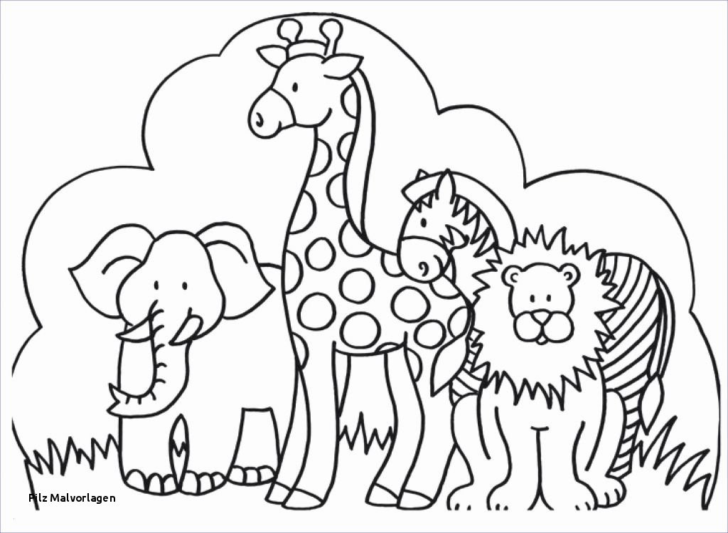 Super Wings Malvorlage Inspirierend Pilz Malvorlagen Super Wings Coloring Pages 3 Bryce Inspirierend Bilder