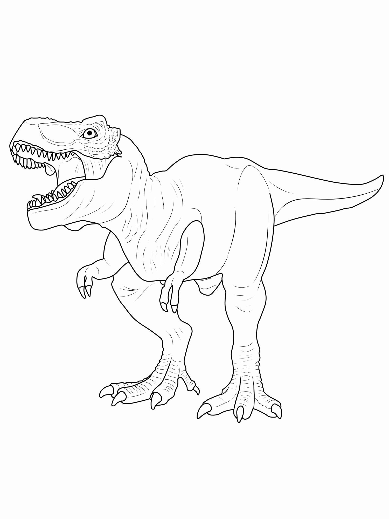 T Rex Ausmalbild Genial Coloriage Dinosaure T Rex Simple Pages to Color Printable New T Rex Bilder