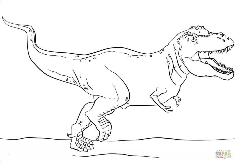 malvorlage dinosaurier rex  dino malvorlagen dinoland