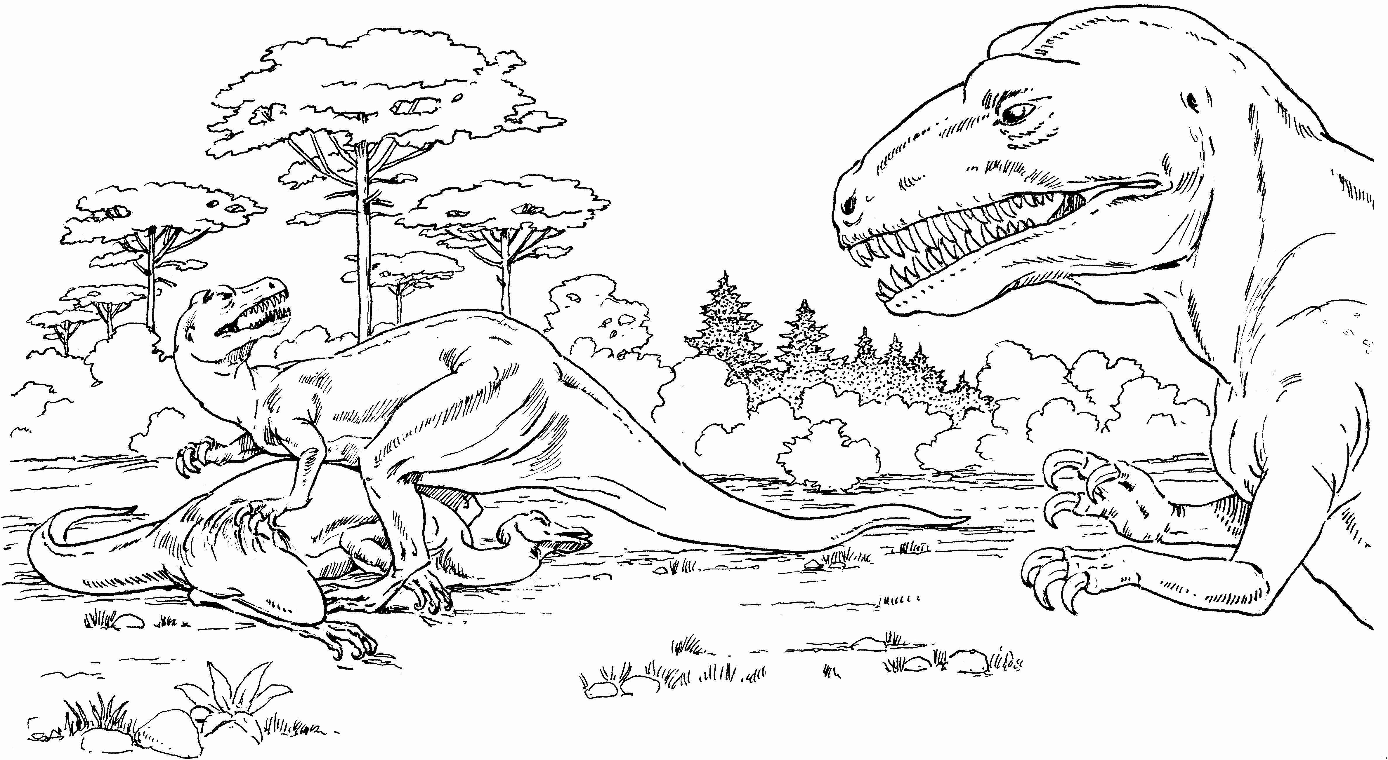 Dinosaurier Bilder Zum Ausmalen Fotos Malbuch Der Dinosaurier Für