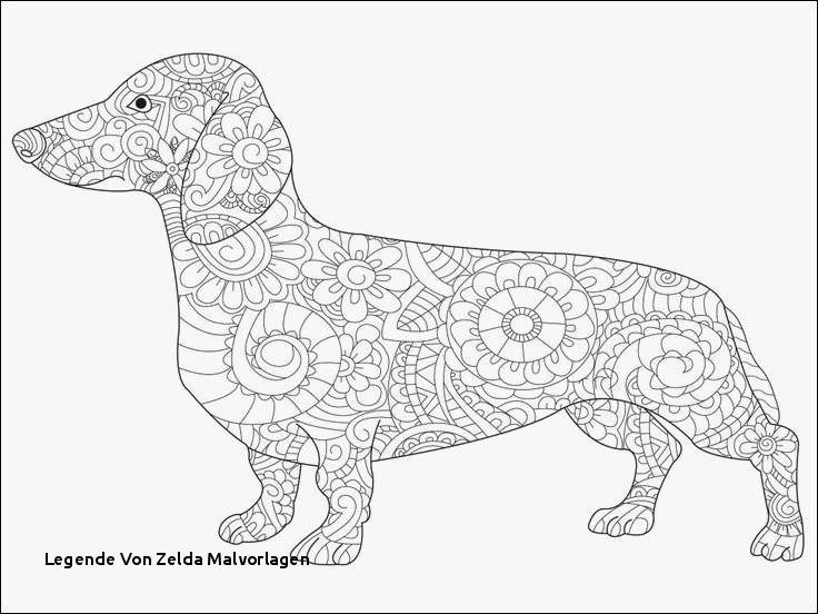The Legend Of Zelda Ausmalbilder Das Beste Von Legende Von Zelda Malvorlagen Ausmalbilder Hunde Zum Ausdrucken Stock