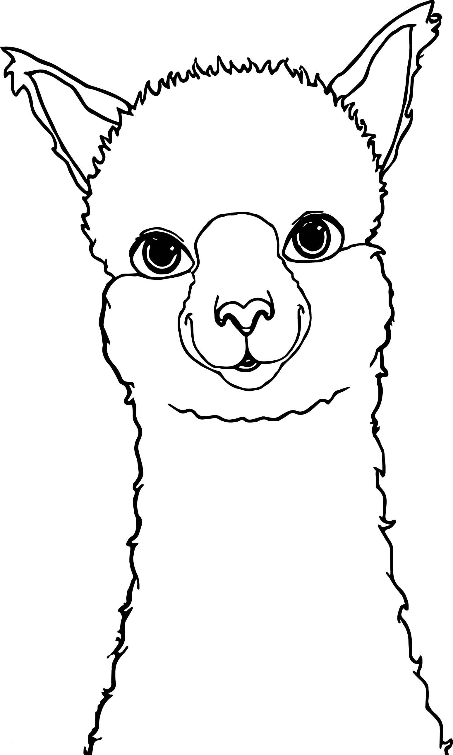 The Legend Of Zelda Ausmalbilder Genial Alpaca Drawing Coloring Page Alpaca Farm Pinterest Schön Fotos