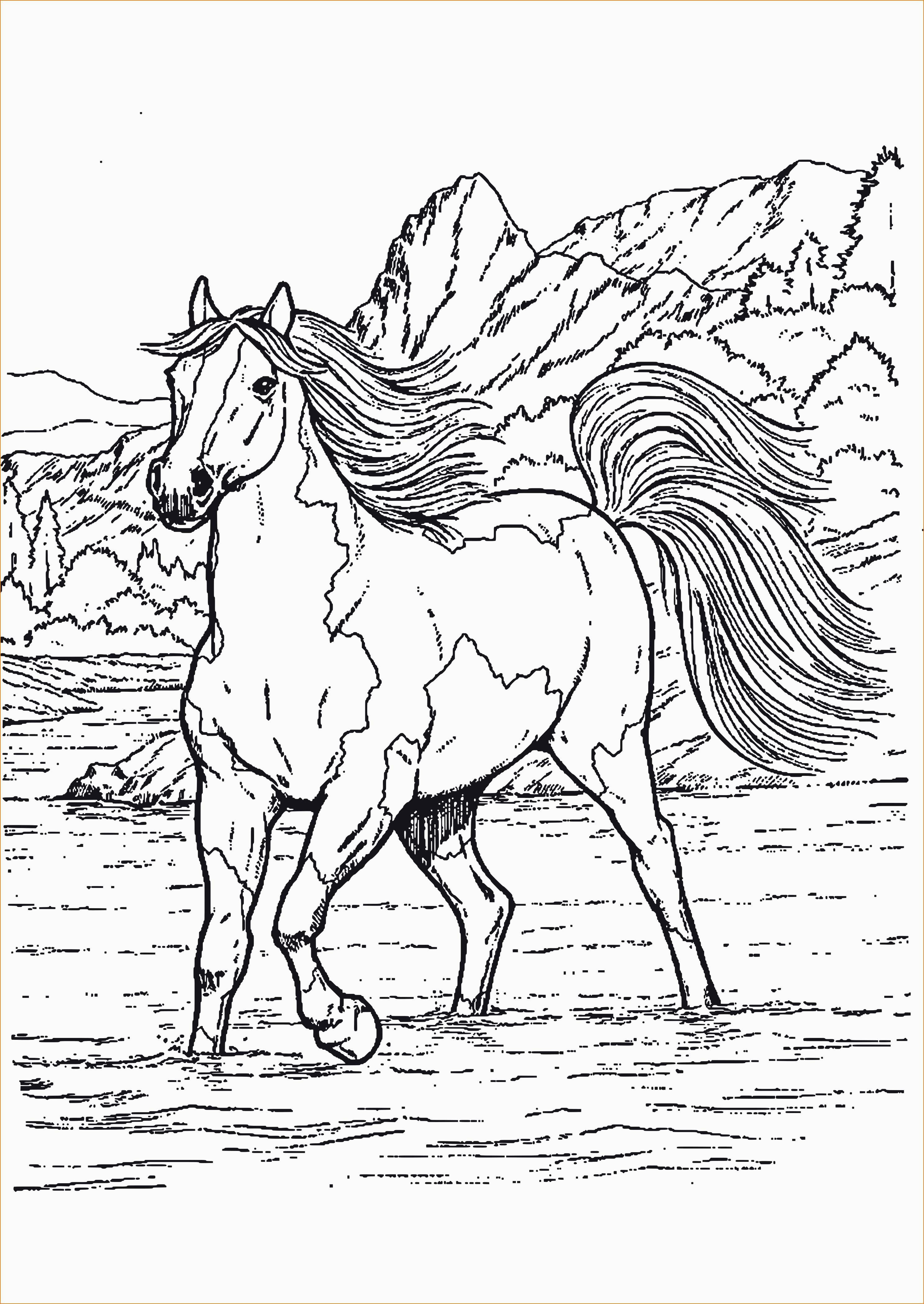 Tierbilder Zum Ausmalen Und Ausdrucken Neu Pferde Ausmalbilder Zum Ausdrucken Kostenlos Kollektionen Von Stock