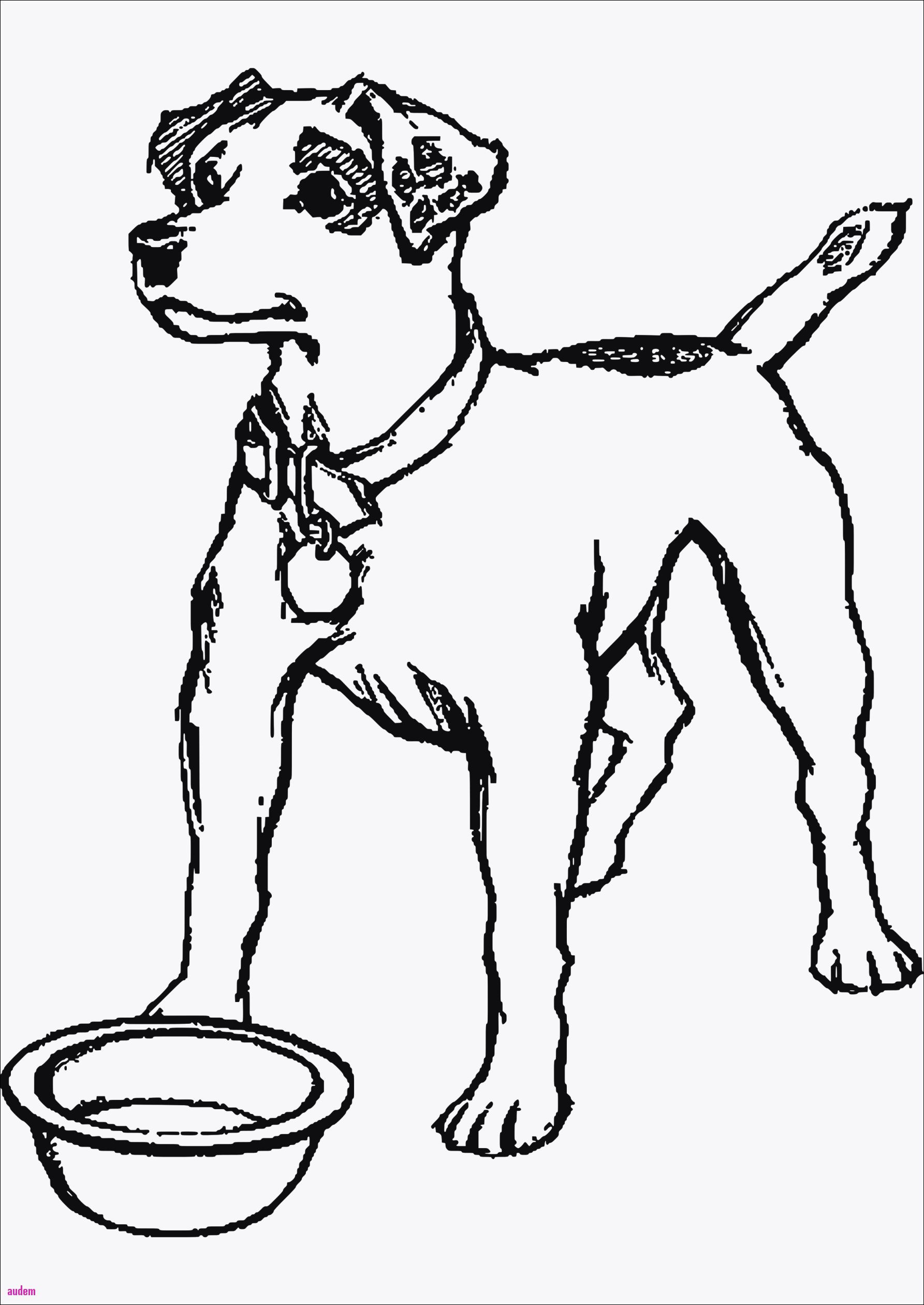 Top Model Ausmalbilder Zum Ausdrucken Kostenlos Frisch Ausmalbilder Hunde Zum Ausdrucken Kostenlos Stock